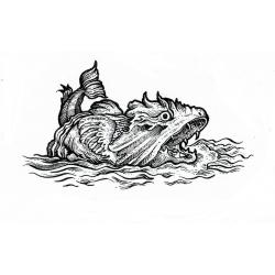 Kacper - wzór ryba potwór