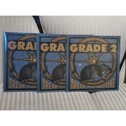"Grade 2 - ""Break the Routine"" LP 12` (blue)"